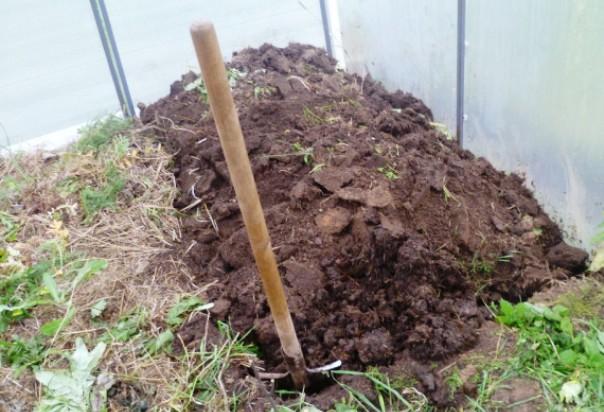 перекопк почвы в теплице