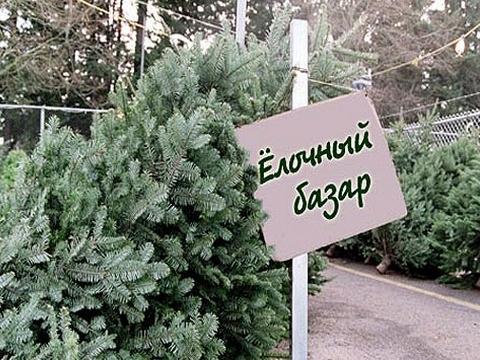 Чтобы радовала елка