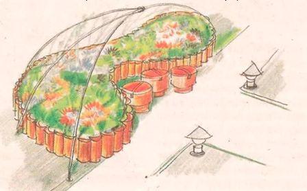 Бордюры цветников