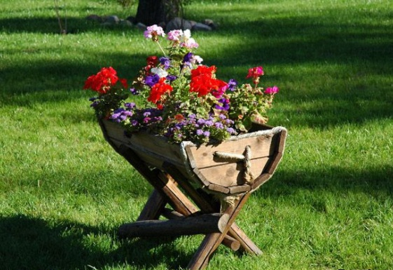 Советы по уходу за цветниками