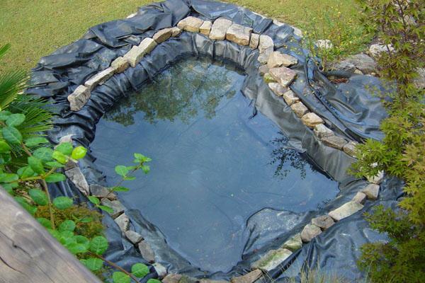 Пленочный пруд