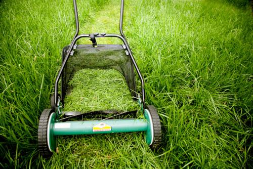 Трава в дело