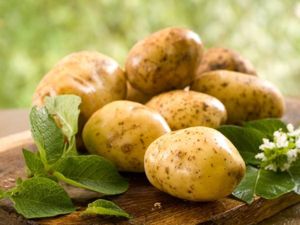 Как улучшить вкус уже растущего картофеля