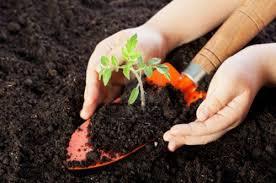 правильная заготовка почвы