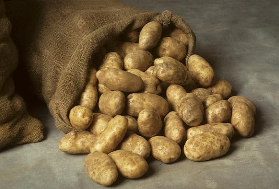 10 простых советов по хранению картофеля