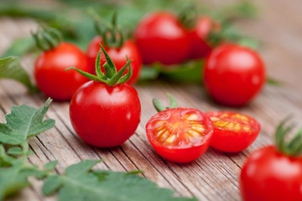 томат под названием Сладкая вишня