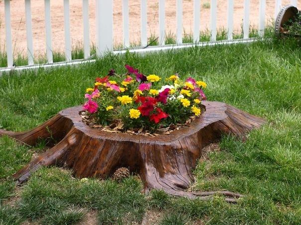 пень как украшение в саду