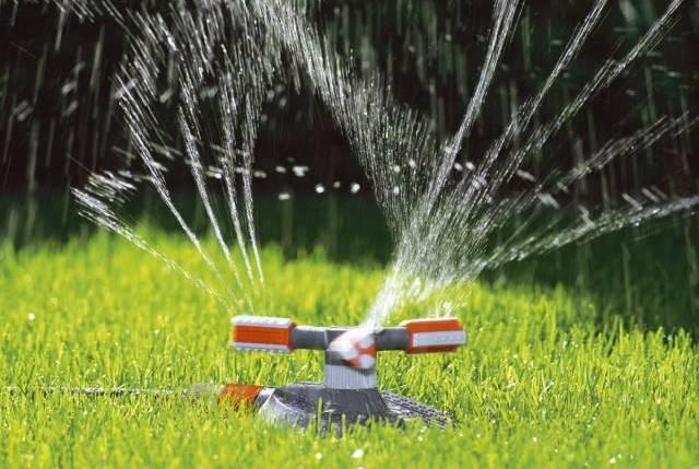 Дождеватель для полива:
