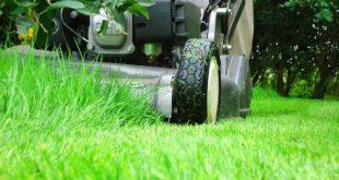 Какая техника может пригодиться для работы в саду?