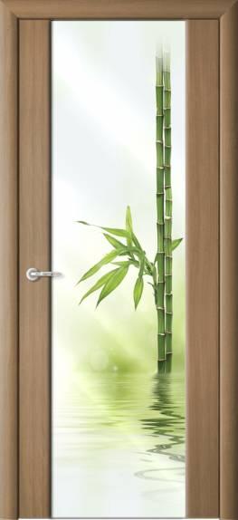 Межкомнатные двери с стеклом и фотопечатью