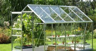 Теплицы из стекла: в чем их характерные отличия?