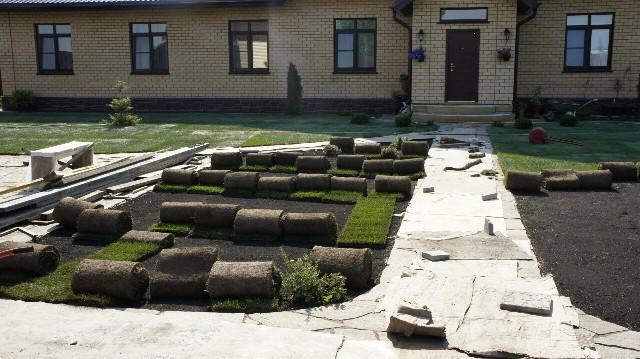 рулонный газон подготовка участка