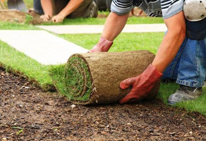 рулонный газон укладка