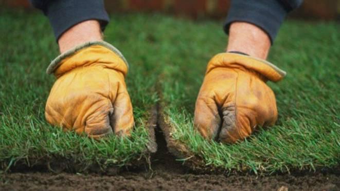 Совмещение швов рулонной травы