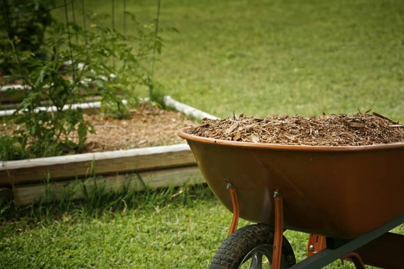 Для чего нужно мульчировать почву? Выбираем материал