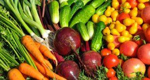 как выбирать зарубежные семена овощей
