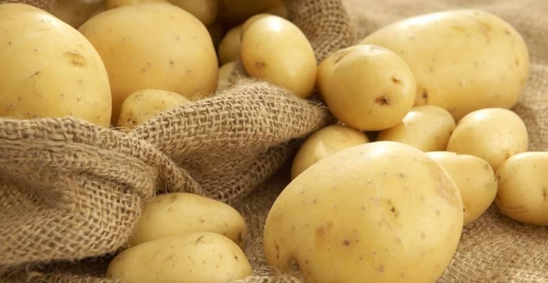Полезен ли сырой картофельный сок