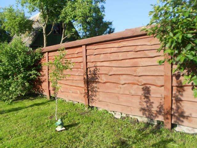 забор из необрезной доски на даче