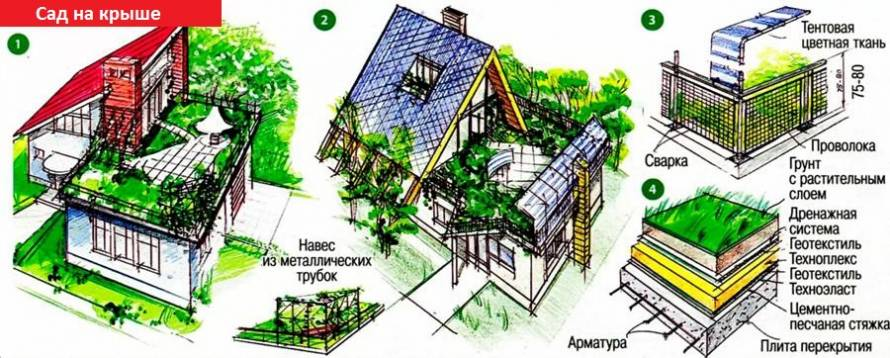 Сад на крыше дачи