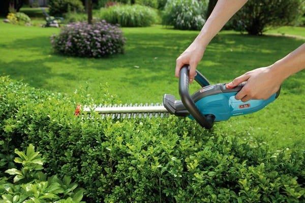 Что включает в себя комплексный уход за участком и садом?