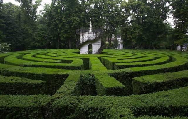 Садовый лабиринт на участке