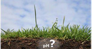 Как отрегулировать кислотность почвы на огороде