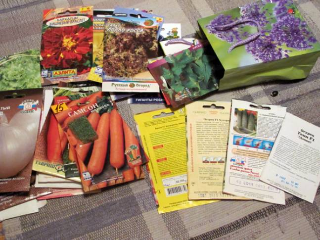 почему покупать семена лучше осенью
