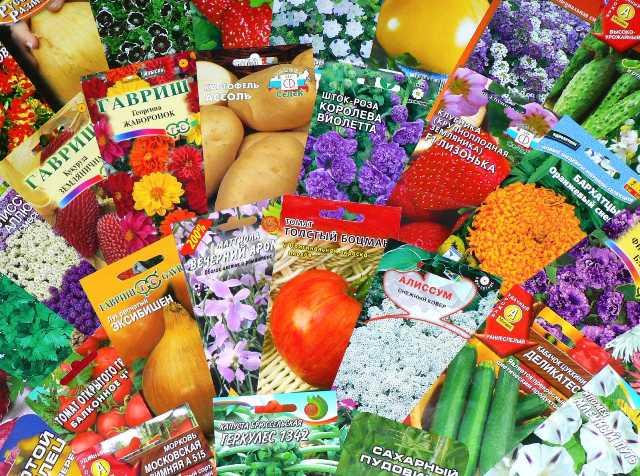 Покупка посадочных семян
