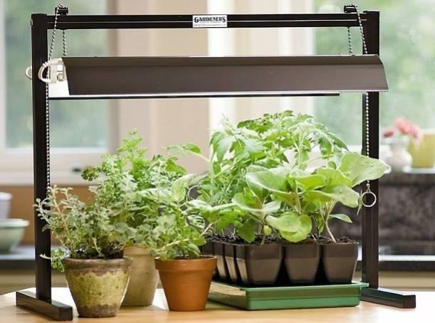 Комплектующие для освещения растений