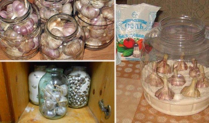 Где и как хранить чеснок в домашних условиях на зиму