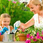 Как справиться с домашними делами? ищем помощника