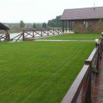 Превосходство рулонного газона: доступно и красиво