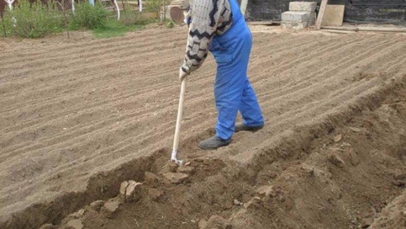 Как нужно перекапывать грунт осенью в огороде