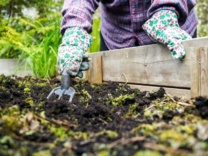Готовим огород и сад к зиме