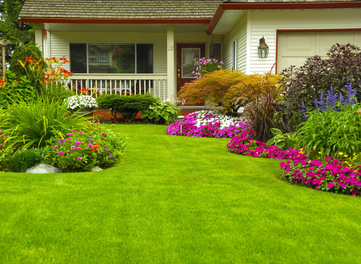 Газон — выбор семян для различных видов газона